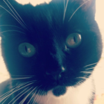 Meet Minnie!