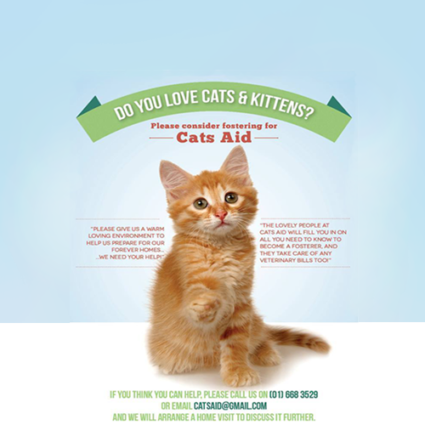 cats_aid