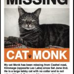 Monk is Missing from Kimmage since June 2nd