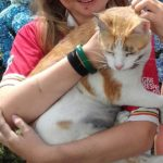 Marmalade is Missing since July 24th