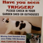 Trigger is still missing from Avondale Drive, Trim.