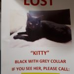 Missing from NCR, Dublin 7, Since Oct 11th